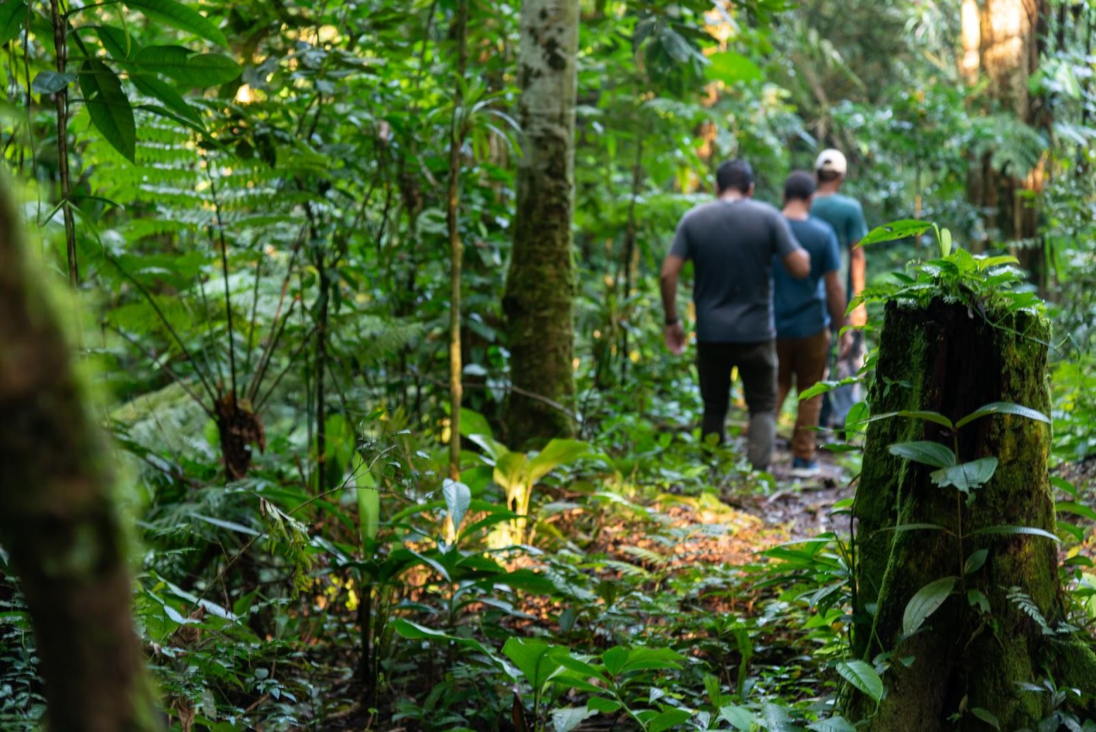 O potencial de crescimento da visitação a áreas naturais no Brasil